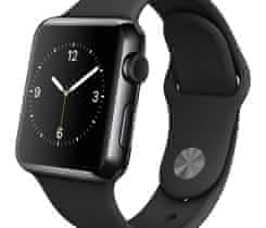 APPLE WATCH / 42mm / Space Black
