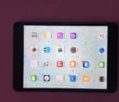 iPad mini 16GB spacegray