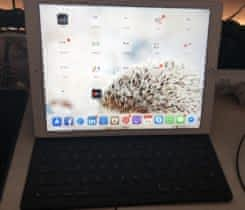 Ipad Pro 128 GB Wifi Cellular (2015)