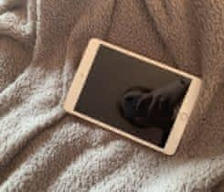 iPad mini 3 Gold 128GB