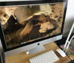 """Prodám počítač Apple iMac 27"""""""