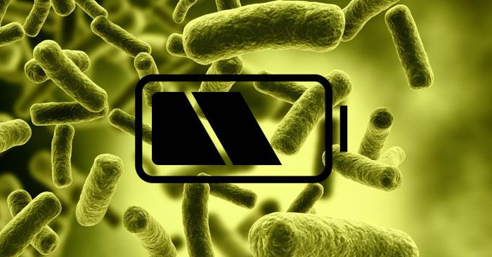 bacteria-battery