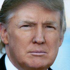 Trump icon