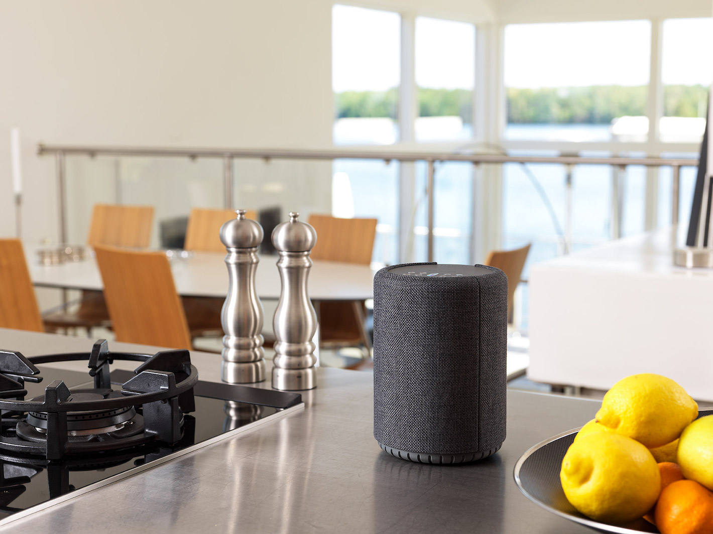 wireless-multiroom-speaker-A10-darkgray-Lifestyle-works-with-alexa-AudioPro-01