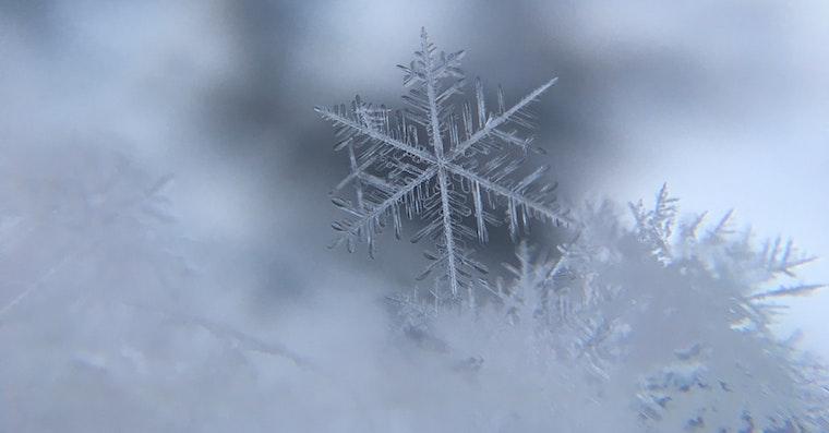 Snow fb