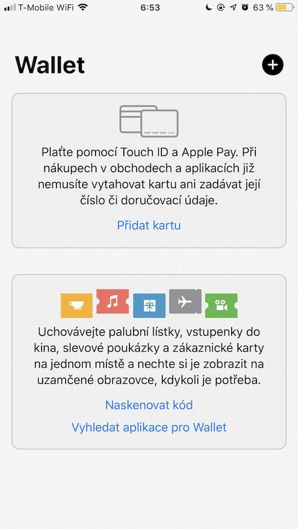Apple Pay Screenshot 1