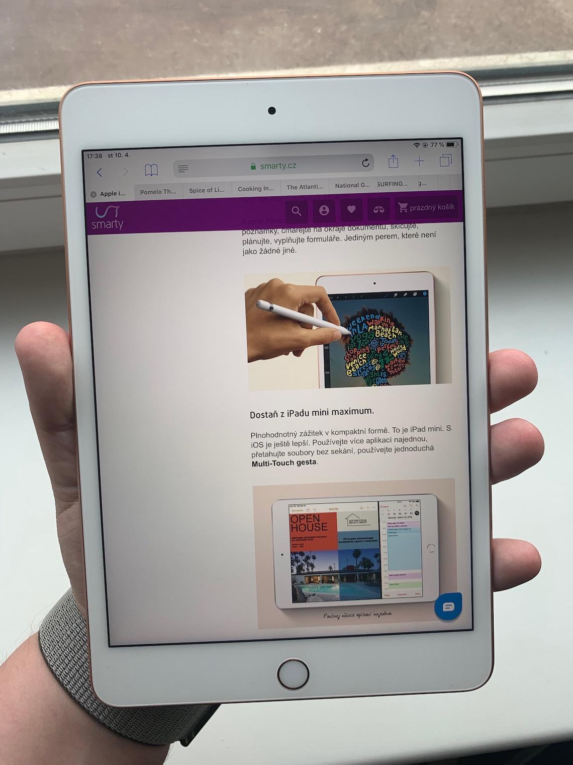 iPad mini LsA 13
