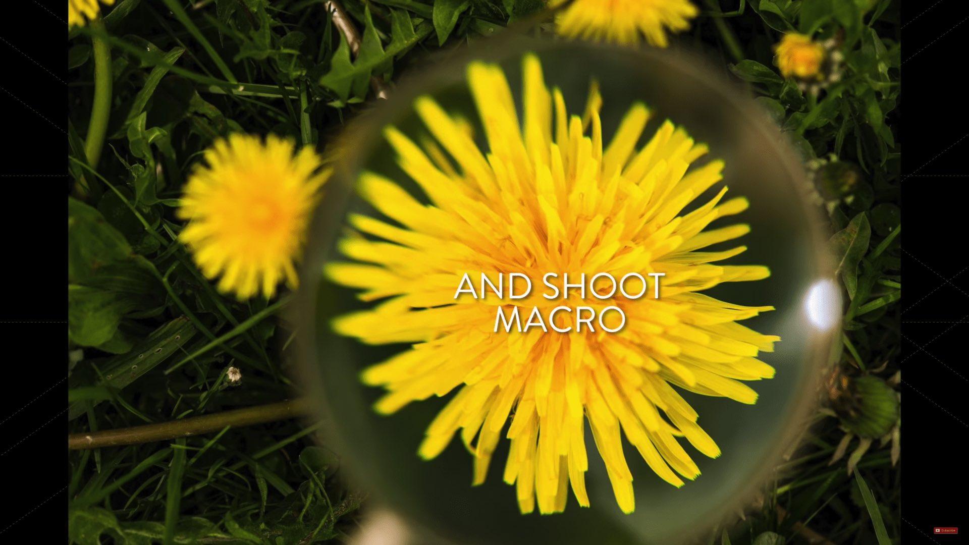 makro fotka pomocí lupy